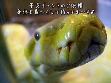 03_20121023182329.jpg