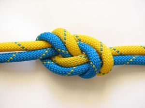 387966_two_figure_eight_knots.jpg